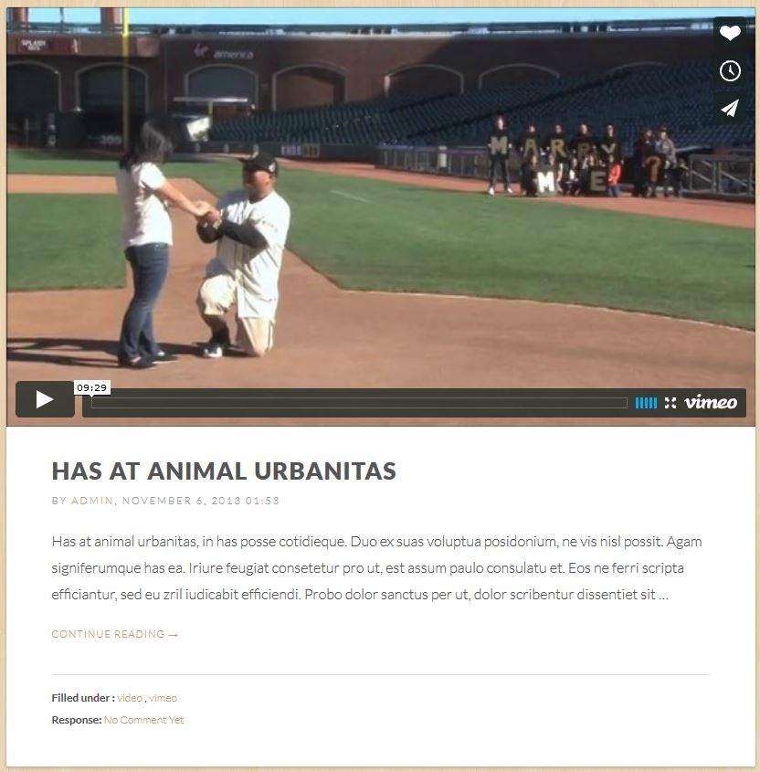 Blog Format - Vimeo