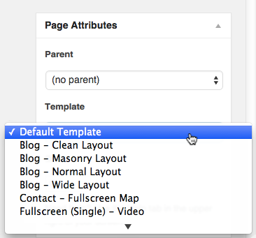 Default Page Template