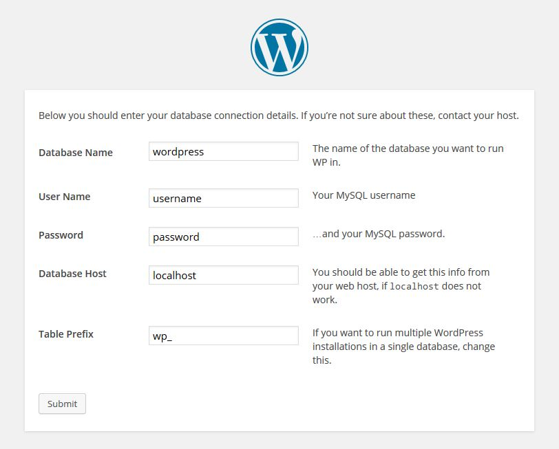 WordPress Database Detail Input
