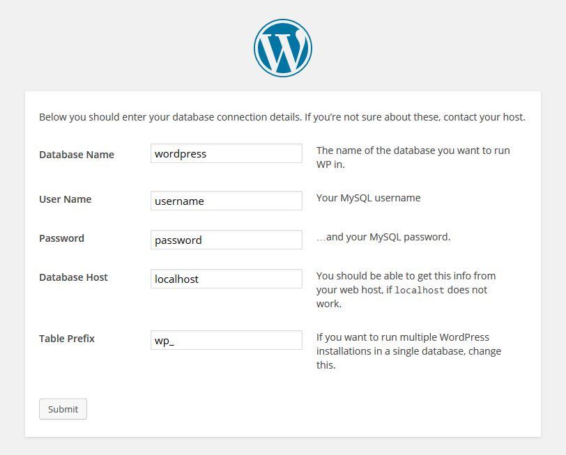 WordPress Database Detail Input