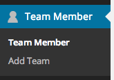 Team Member
