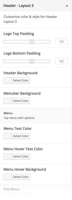 Customizer Header Layout 3